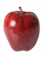 Sadnice jabuka - jabuka Red Top